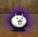 狂乱のネコ